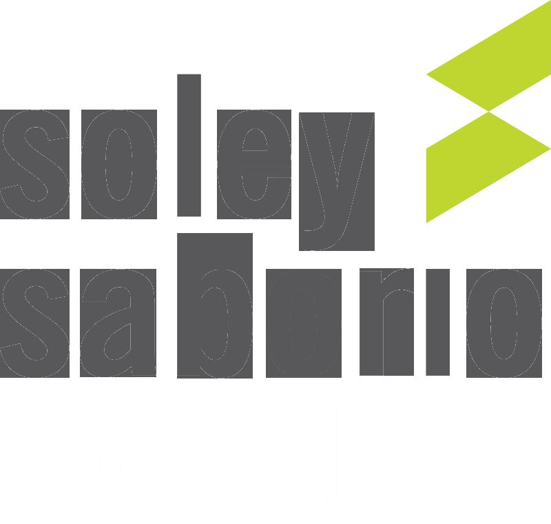 logoSS
